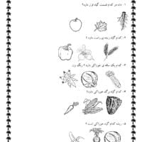 آزمون علوم اول ابتدایی بخش  گیاهان