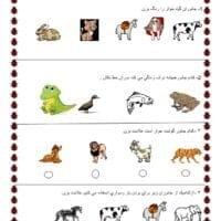 آزمون عملکردی علوم اول ابتدایی بخش جانوران